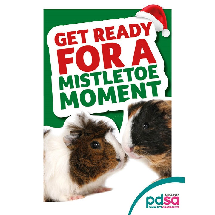'Get Ready for a Mistletoe Moment'