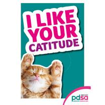 'I Like your Catitude'