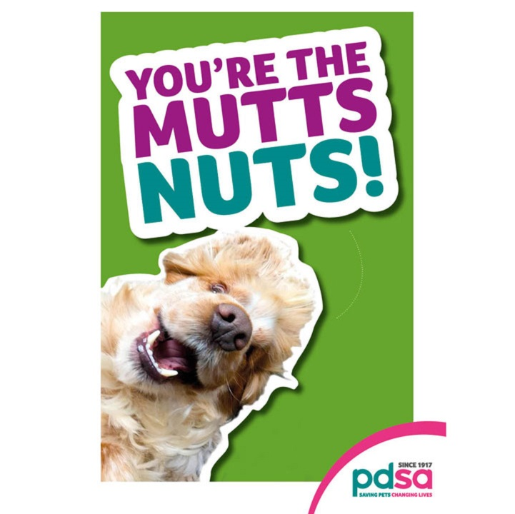 'You're the Mutts Nuts'