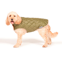 Quilted Dog Coat Green