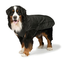 2 in 1 Harness Dog Coat 75cm