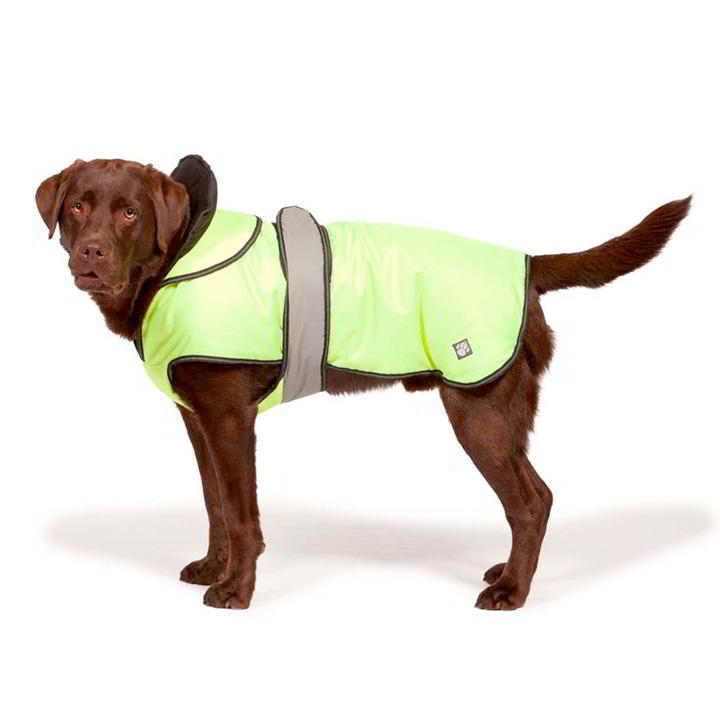 Hi-Vis 2 in 1 Dog Coat