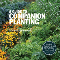 Image of A Guide To Companion Planting