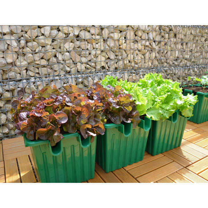 Oasebox Self Watering Planter - Green