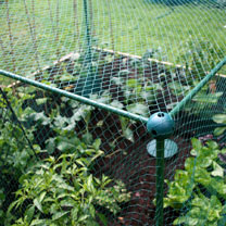 Butterfly Protection Cage - 250 x 125 x 125cm
