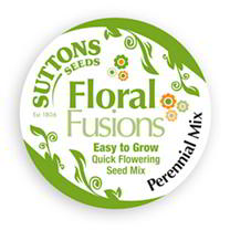 FloralFusions Seeds - Rigoletto