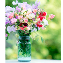 Click to view product details and reviews for Sweet Pea Seeds Sublime Scent Mix.