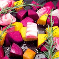 Beetroot Plants - Rainbow Mix
