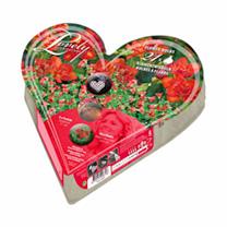 Plant-o-Mat Heart Shaped - Oxalis/Freesia
