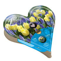 Plant-O-Tray Heart Pre-planted Bulbs - Tulip & Muscari