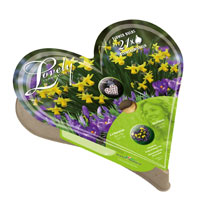 Plant-O-Tray Heart Pre-planted Bulbs - Narcissus & Crocus