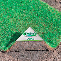 Natural Turf, Delivery Day, Accessories