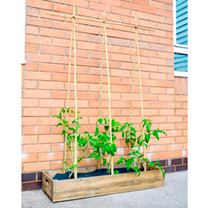 Image of Grow Bag Wooden Crate Kit
