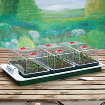 Big 3 Electric Propagator