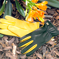 Dry Touch Gloves - Ladies