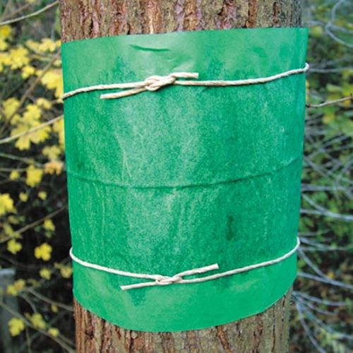 Glue Bands - Ready to Use