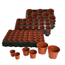 Growing on Pots and Trays, 6 Trays & 48 13cm Pots