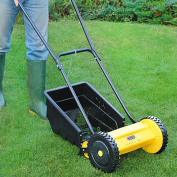 Get your lawn in order
