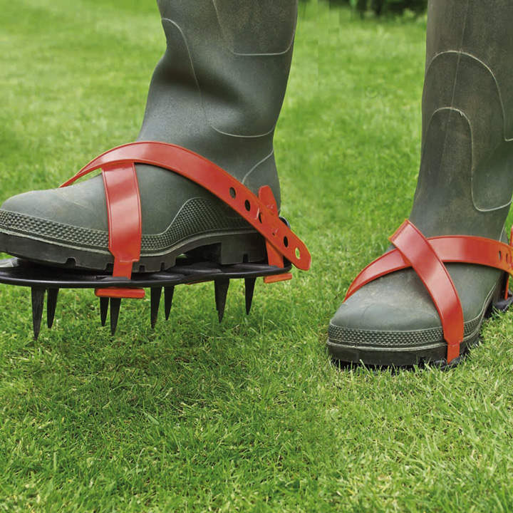 Lawn Spikes