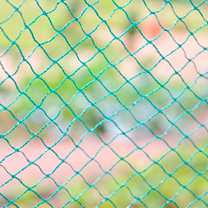 Bird Protection Net - 4m x 10m