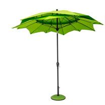 Parasol Lotus