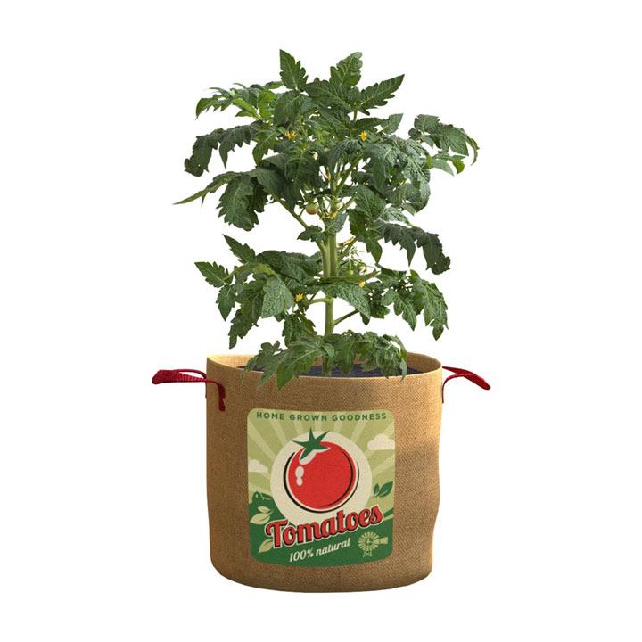Vintage Tomato Planter