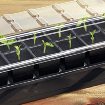 Click to view product details and reviews for Self Watering Seed Success Kits 2 Kits.