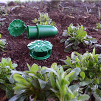Lay this multi-pack of Slug Inn traps around your flower patch or veg plot, and bait with beer or slug bait. They'll protect your plants without havin