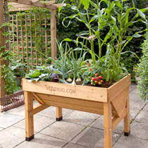 VegTrug x 1m plus FREE seeds worth £15