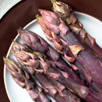 Asparagus Crowns - Erasmus