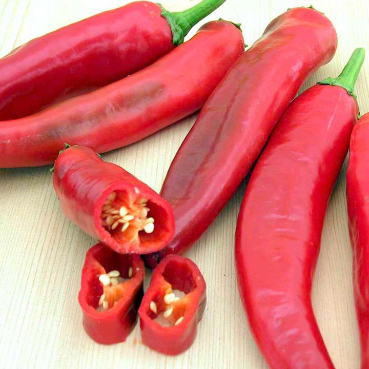 Pepper Seeds - Paprik