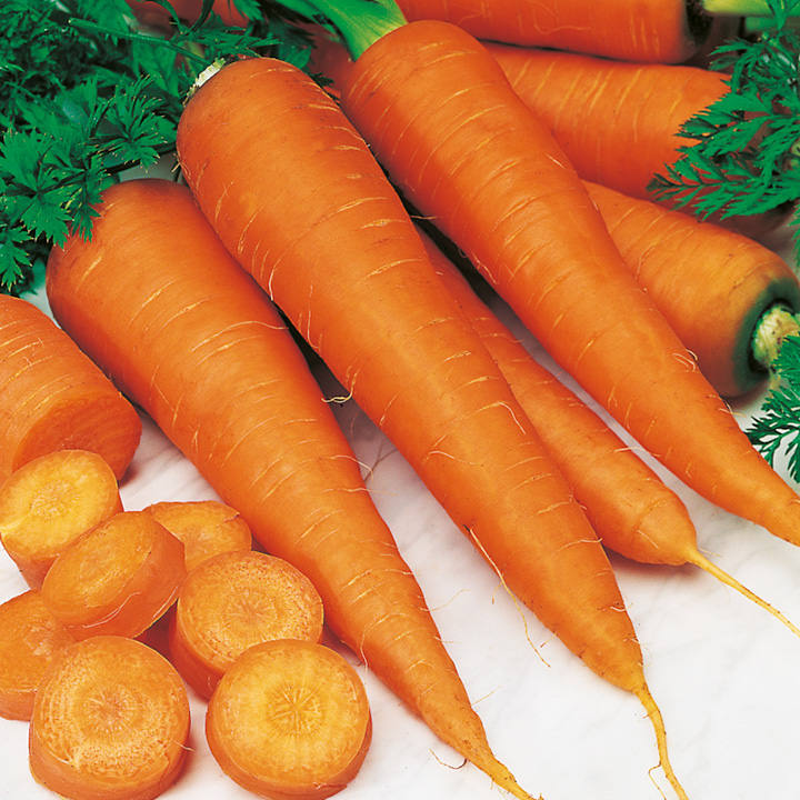 Carrot Seeds - St. Valery