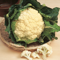 Cauliflower Seeds - Galleon