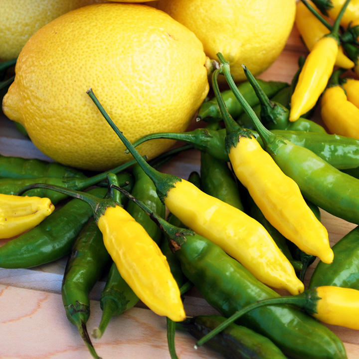 Pepper Chilli Seeds - Peruvian Lemon Drop