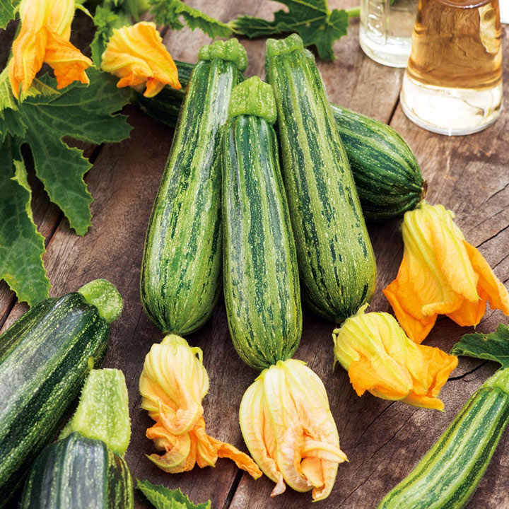 Courgette Seeds - Courcourzelle