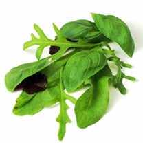 Leaf Salad Seeds - Italian Mix