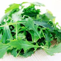 Leaf Salad (Organic) Seeds - Mizuna