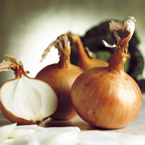 A particularly well flavoured onion whith good medium to long term storage capability. Uniformly shaped with good skin colour. Very versatile in the k