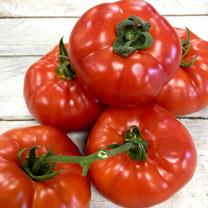 Tomato Seeds - Heinz 1350