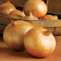 3 easy steps to grow great onions